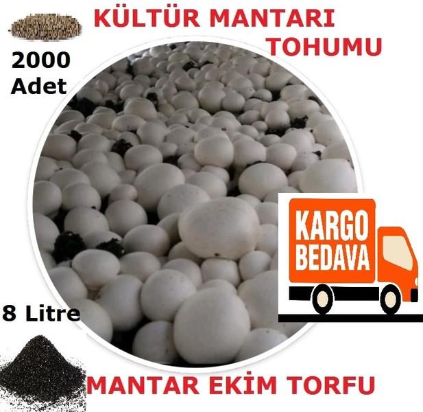 2000 Adet Kültür Mantarı Tohumu ve 8 Litre Mantar Kompostu (Mantar Ekim Torfu) fiyatı