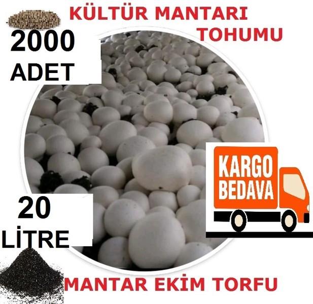 2000 Adet Kültür Mantarı Tohumu ve 20 Litre Mantar Ekim Torfu